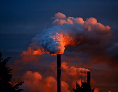 oczyszczanie_organizmu_smog